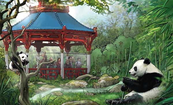 Erste Planungen Panda-Anlage im Zoo Berlin_2015